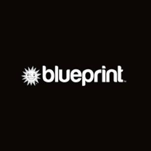Neie Slot vu Blueprint Gaming