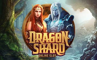 Avis du jeu de casino Dragon Shard